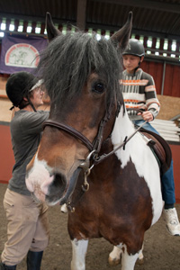 Wormwood Scrubs Pony Centre